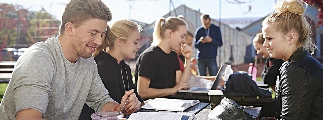تحصیل دکتری در دانمارک